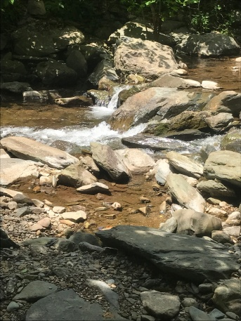Babbling waters accompany hikers on this trail.