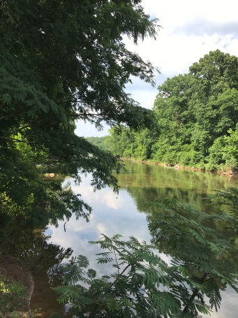 The Rihanna River as seen from the Rivanna River trail.
