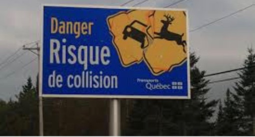 You know when signs are all in French, you've made a wrong turn!