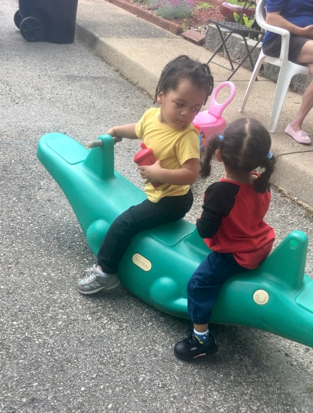 My great nephew, Champ, playing with his cousin.